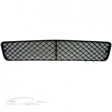 Bentley Continental Front Bumper Grill Center 3W8807667C